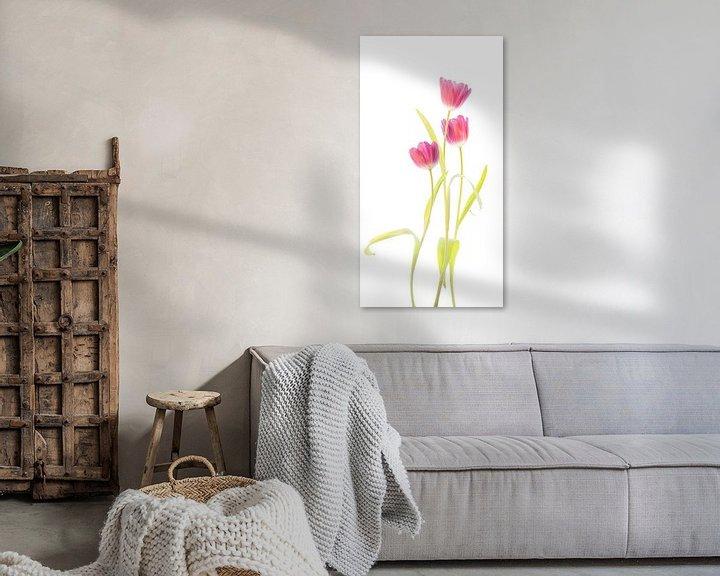 Sfeerimpressie: Tulpen van Fionna Bottema