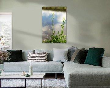 Luchtspiegeling von Jan Croonen