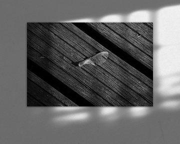 Helikoptertje op planken van een brug in zwart-wit von Anne van de Beek