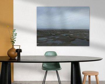 9.e Landschaft, landschaftlich reizvolle Gegend, Salzsumpf Noarderleech, waddenzee