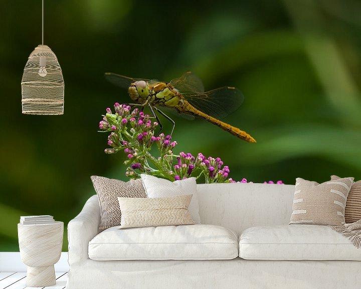 Sfeerimpressie behang: Groene Heidelibel op Vlinderstruik van Martin Smit