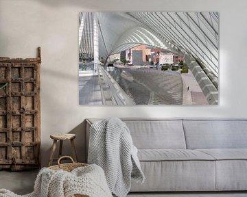 ode aan Santiago Calatrava van Marco Titucci