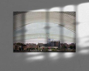 ode aan Santiago Calatrava von Marco Titucci