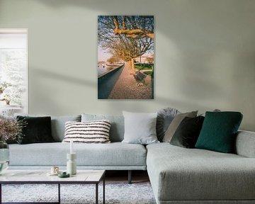 Boulevard langs de haven van Fotografiecor .nl