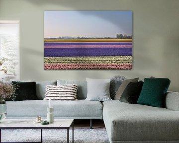 Bollenvelden in Bloei von Charlene van Koesveld
