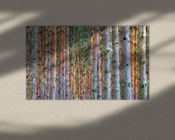 bomen abstract