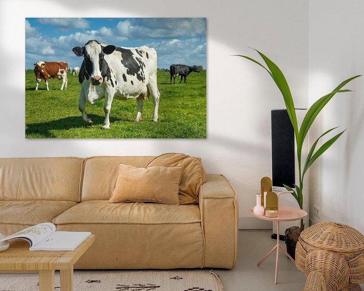 Sfeerimpressie: Hollandse koe van Menno Schaefer