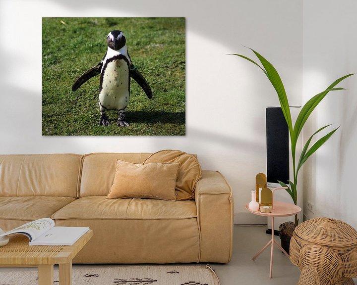 Beispiel: African penguin  von michael meijer