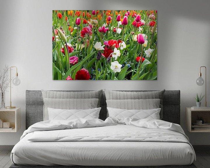 Sfeerimpressie: tulpenveld  in de keukenhof van Compuinfoto .