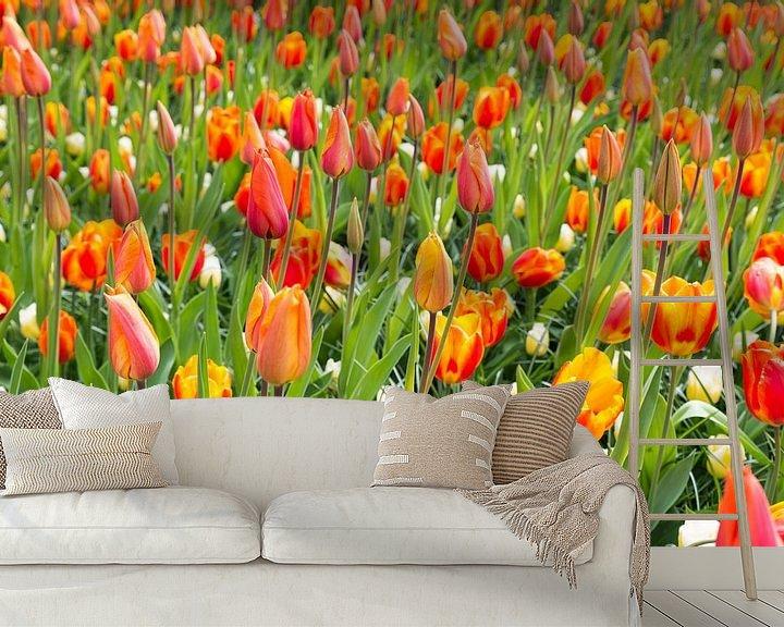 Sfeerimpressie behang: veld met oranje tulpen op de keukenhof van Compuinfoto .