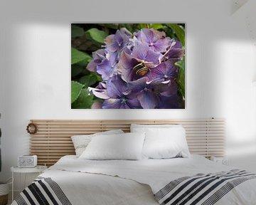 Slak met bloem von G.m. Seuren