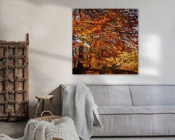 Herfstblaadjes in November van Erik Rudolfs