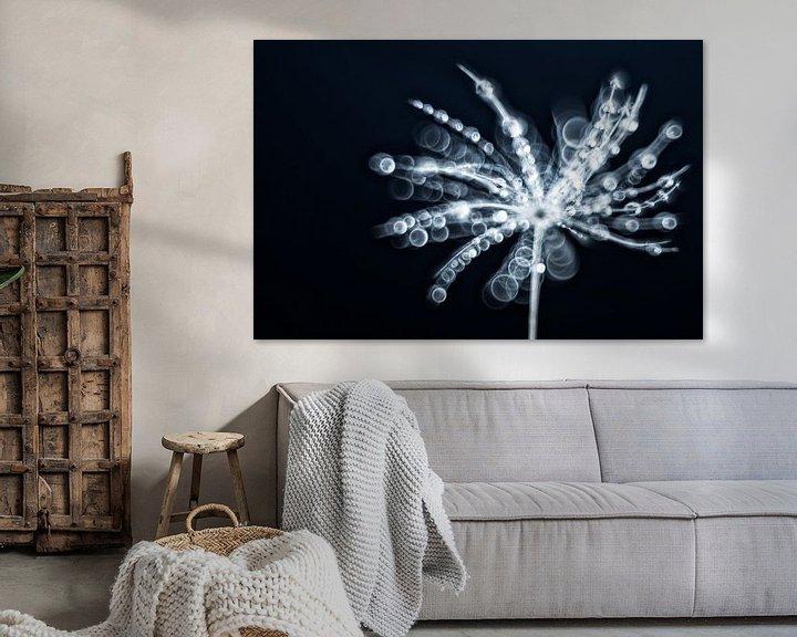 Sfeerimpressie: Fragiel, een pluisje behangen met waterdruppels van Gerry van Roosmalen