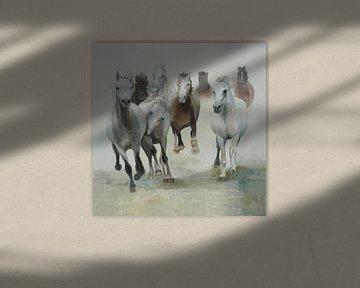 Pferde Gruppe von Pferden im Galopp von Color Square