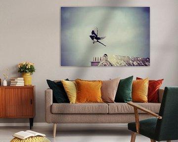 vogel / bird / oiseau van melissa demeunier