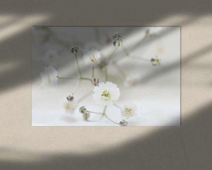Sfeerimpressie: Sneeuw wit van Carla Mesken-Dijkhoff