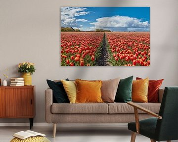 bollenvelden met tulpen in bloei van eric van der eijk