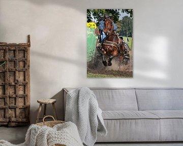 Paard tijdens wedstrijd van Renate Peppenster