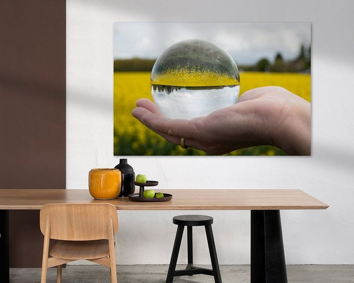 Impression: rapeseed in glass sphere sur Compuinfoto .