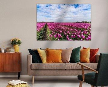Tulpen in de Flevopolder von Edo Koch