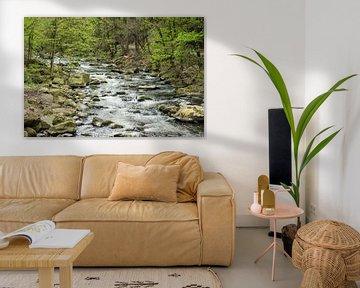 Landscape with river and trees van Rico Ködder