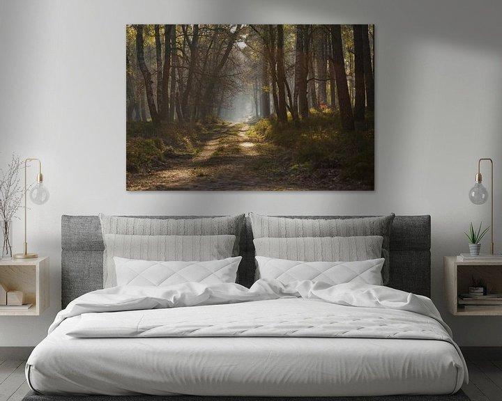 Sfeerimpressie: Bospad van Niels Barto