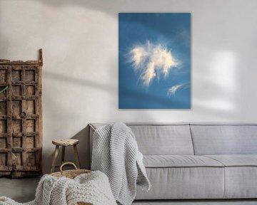 Engel in de wolken van Kevin Overbeek