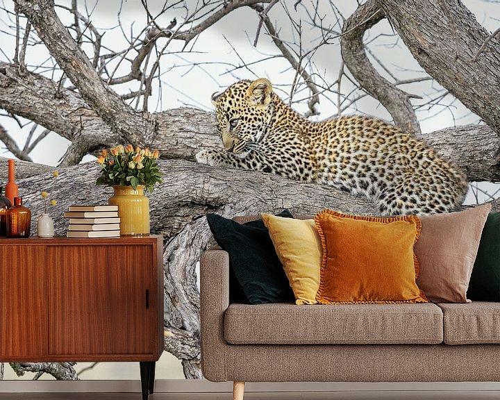 Sfeerimpressie behang: Luipaardwelpje ontwaakt van jowan iven