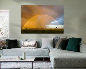 Regenboog in de lucht van Karla Leeftink