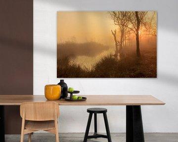 Mistige morgen in oranje van Karla Leeftink
