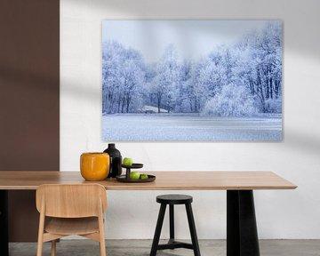 Witte bomen aan bevroren meer van Karla Leeftink