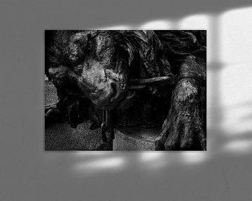 bronzen leeuw Venetie von Raymond Schrave
