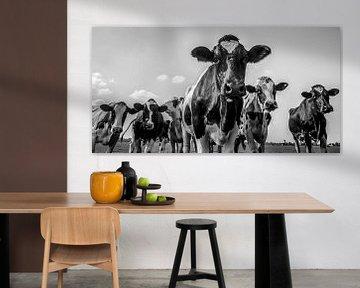 Vaches dans un domaine pendant l'été en noir et blanc sur Sjoerd van der Wal