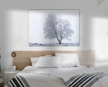 Eenzame berijpte boom van Karla Leeftink