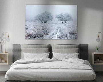 Wit berijpt landschap van Karla Leeftink