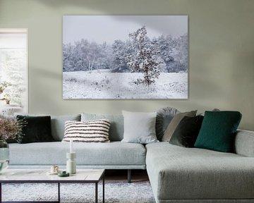Winter van André Dorst