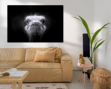struisvogel close up van Eric van den Berg