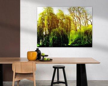 Tree Magic 165 van MoArt (Maurice Heuts)