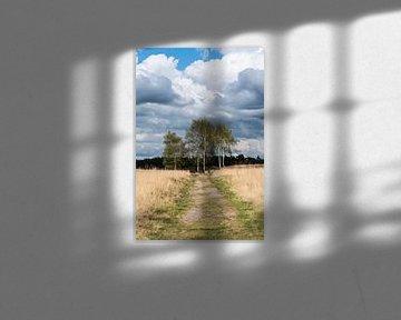 Landschap landgoed Heidestein Driebergen-Rijsenburg van Wil Vlasveld