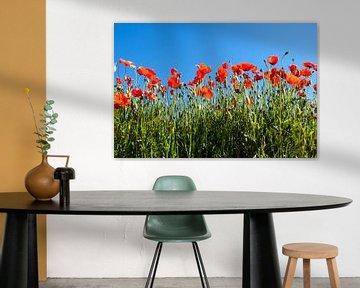 Red Poppys von Dora van der Sande