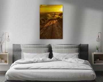 Licht der Toskana von Lars van de Goor