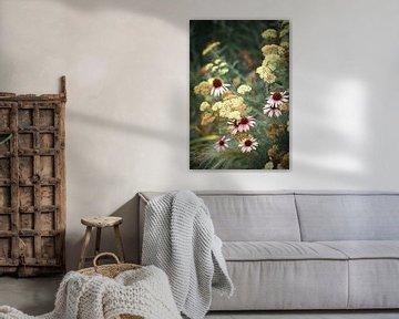Een natuurlijk Echinacea boeket in zachte kleuren