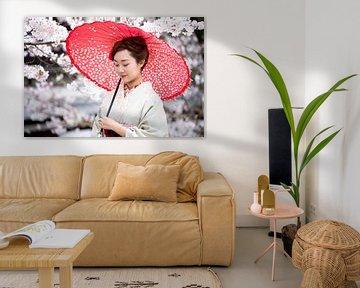 Frau mit Sonnenschirm im Kimono vor Kirschblüten, Japan von Maarten Mensink