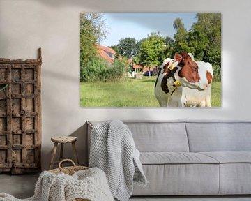 Bruin wit gevlekte koe in weiland