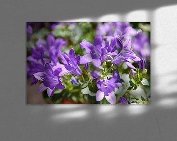 Paarse bloemenweelde van Elisabeth De Potter