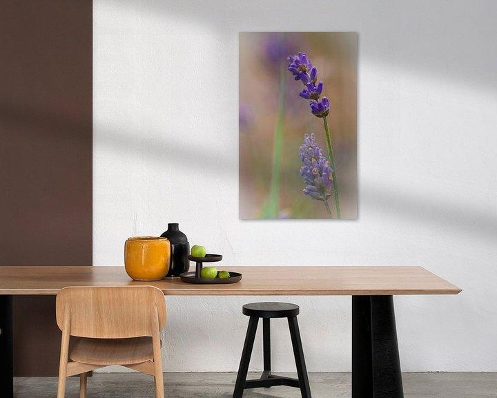 Sfeerimpressie: Lavendel van Lily Ploeg
