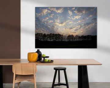 Zonsondergang in Drenthe von Leon van Voornveld