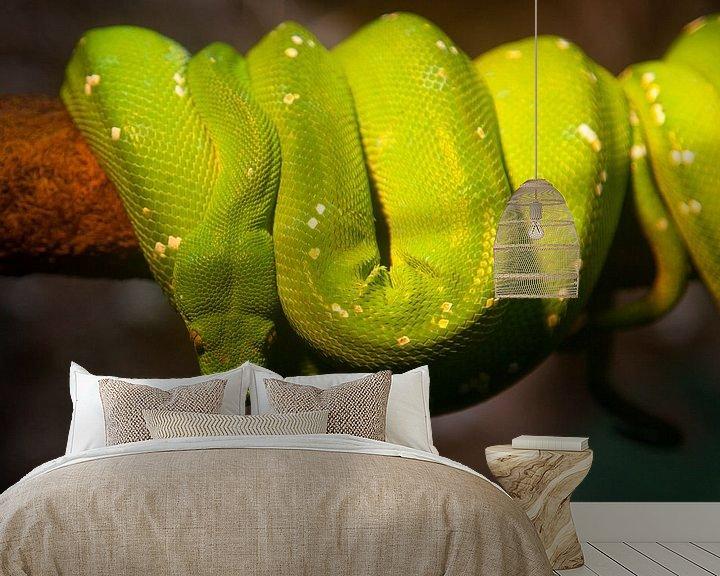 Impression: Snake sur Vincent van den Hurk