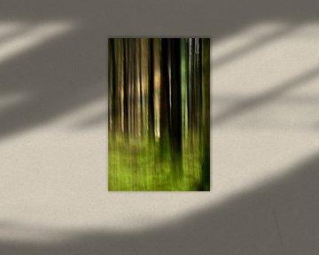 Tremotion, licht