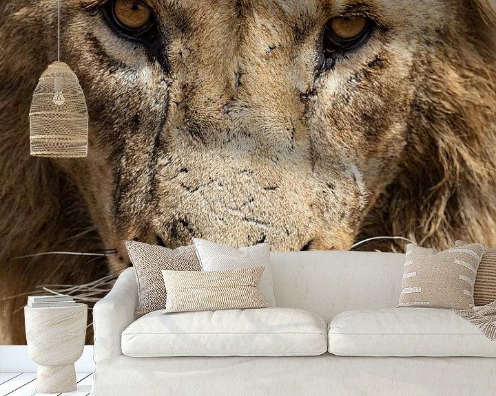 Sfeerimpressie behang: Starende Leeuw van Ronne Vinkx